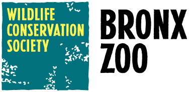 Bronx-Zoo-2